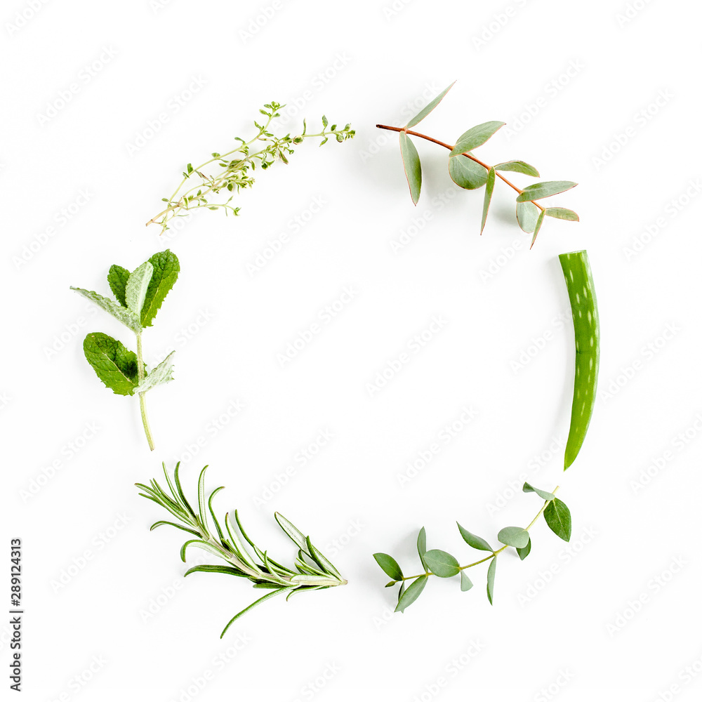Fototapety, obrazy: Round wreath frame made of mix of herbs, green branches, leaves mint, aloe Vera, eucalyptus, thyme and plants collection on white background. Set of medicinal herbs. Flat lay. Top view.