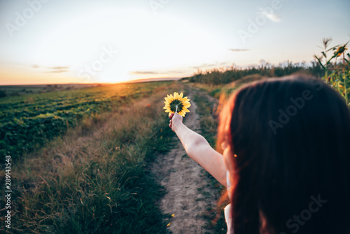Photo sur Toile Tournesol Close up portrait of young girl with brunette loose hair that pointing hand with sunflower into the distance, sunset on the background
