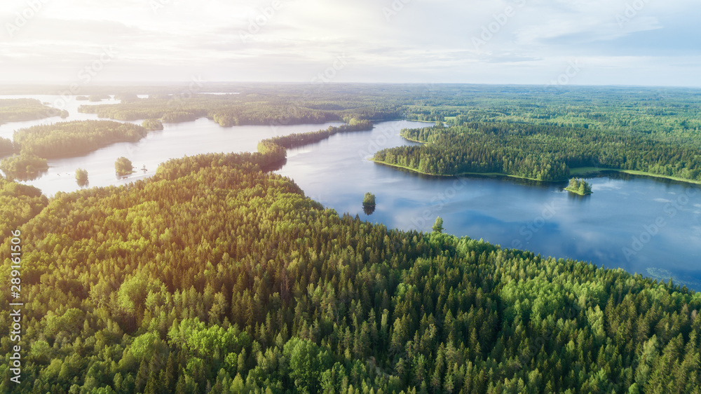 Fototapety, obrazy:  Lake system surrounded with green forest in Finland, aerial landscape. Nature exploration concept.