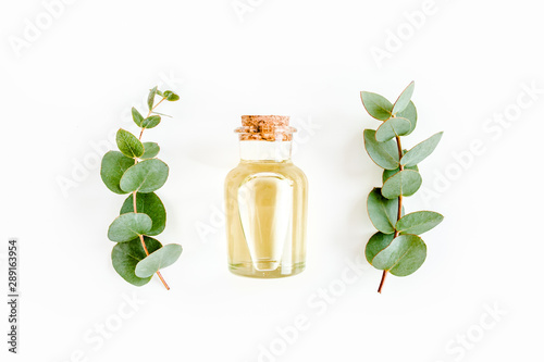 Obraz Essential oil and green branches, leaves eucalyptus on white background. Medicinal herbs. Flat lay. Top view. - fototapety do salonu