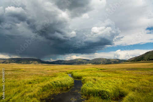 A stream winds through grasslands under a dramatic stormy sky in the Valles Cald Canvas Print
