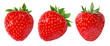 canvas print picture - Strawberry isolated on white background
