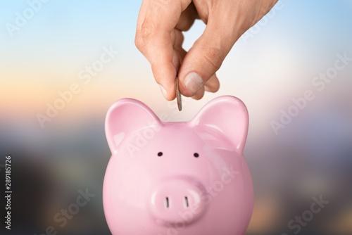 Fototapeta Piggy bank. obraz