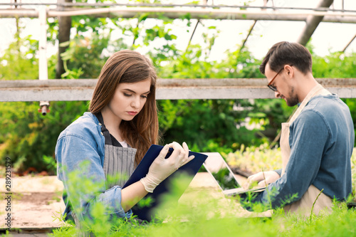 Photo Young agricultural engineers working in greenhouse