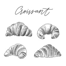 Croissant Hand Drawn Sketch Ve...