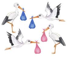 Set Of White Storks With Girl ...