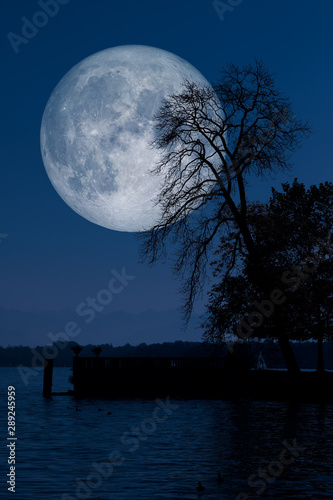 Valokuvatapetti Full moon with tree lake reflections