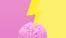 Lighting Brain 3d Rendering