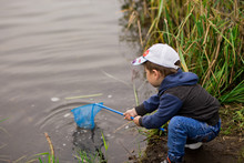 Preschooler Boy In A Tracksuit And Cap Catches A Net On The Lake With A Net And Caught Mud And Grass. Children's Fun In The Summer. Horizontal Photo