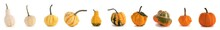 Diverse Pumpkins On White Background