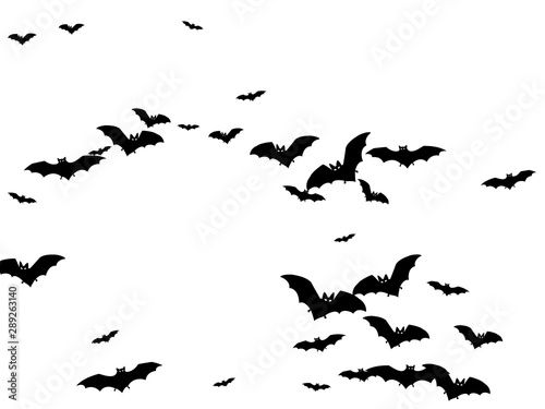 Dangerous black bats group isolated on white vector Halloween background. Flittermouse night creatures illustration. Silhouettes of flying bats traditional Halloween symbols on white.