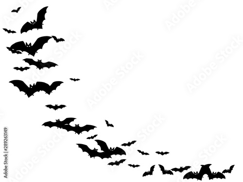 Gothic black bats swarm isolated on white vector Halloween background Canvas-taulu
