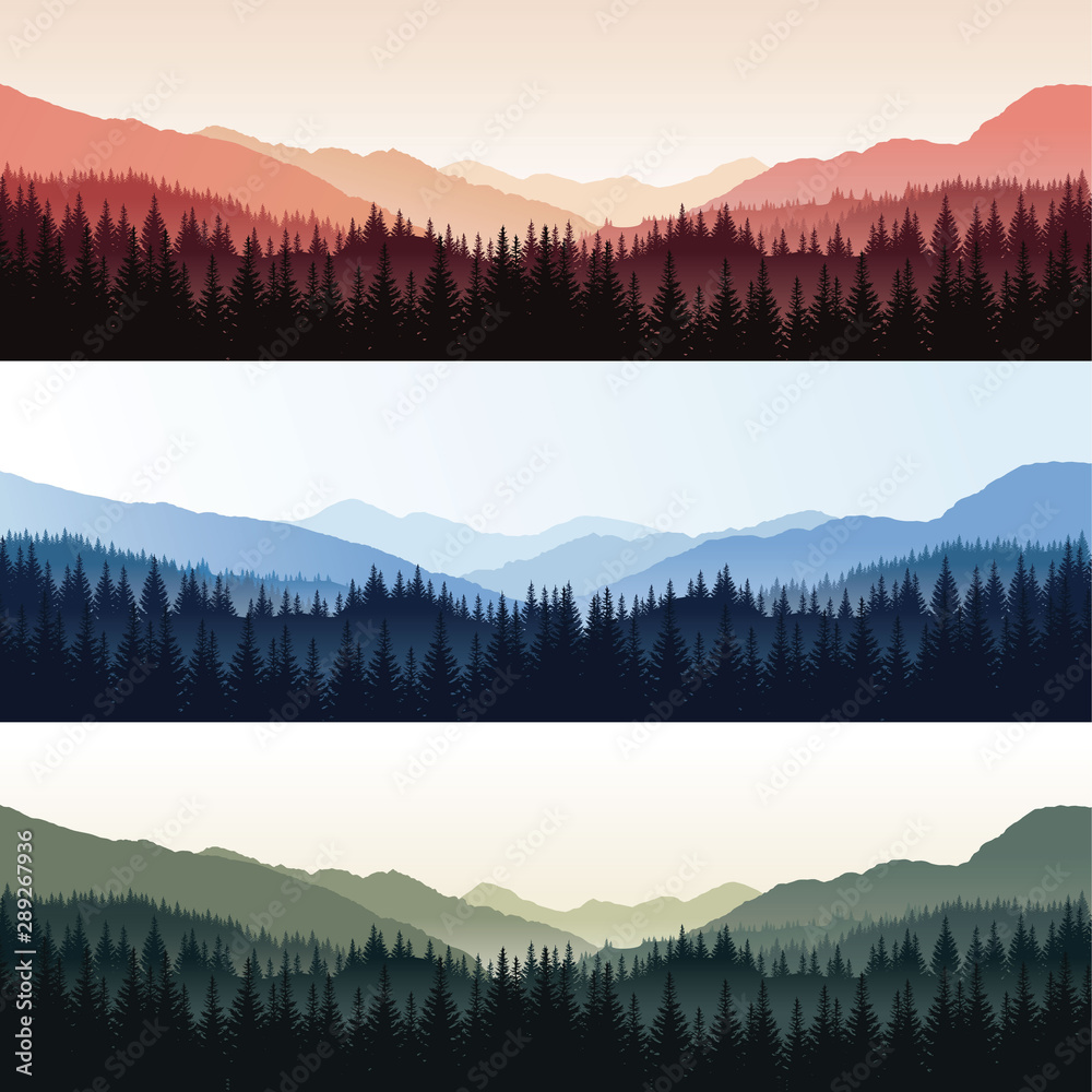 Fototapeta Vector set of landscapes with forest and misty mountains in different colors