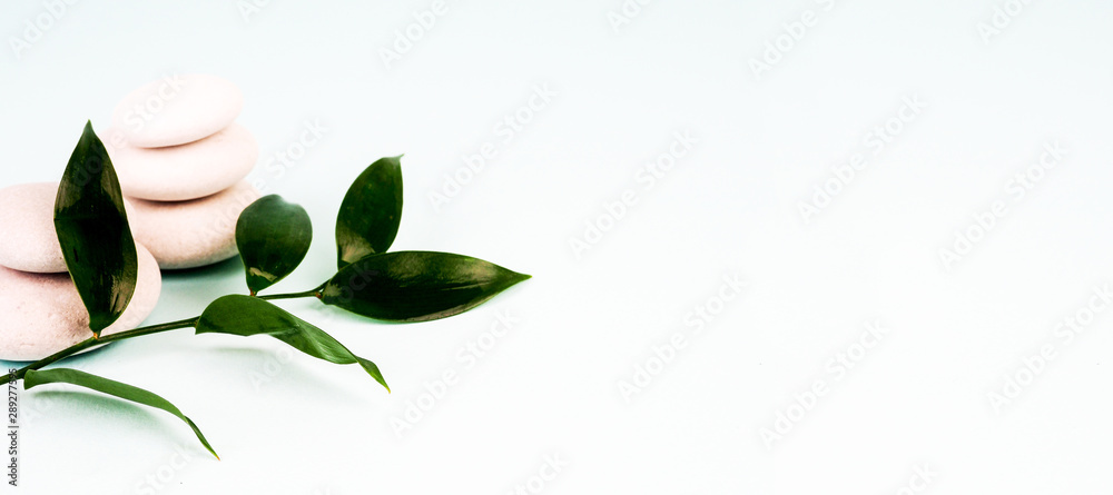 Fototapety, obrazy: heap of stones and green leaves on blue background