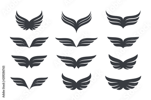 Foto  Wings vector Collection