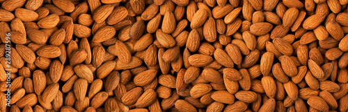 Photo Almond background panorama.