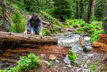 Avalanche Debris Fallen Tree With Man Crossing River On Conundrum Creek Trail In Aspen, Colorado In 2019 Summer Climbing Over Tree