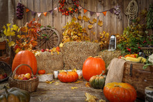 Decoration Autumn Hay Pumpkins...