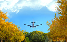 Flying Low In The Sky Over The Flowering Trees Plane