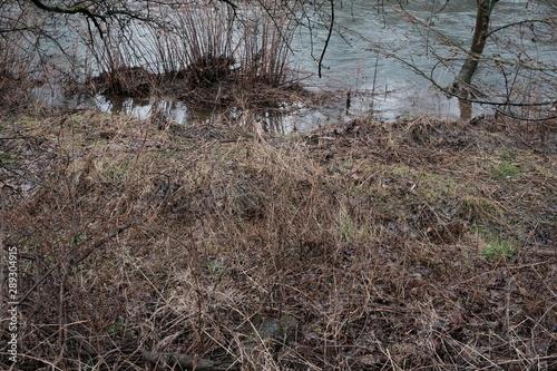 Türaufkleber Darknightsky Landscape and river