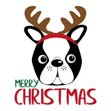 Merry Christmas Text, With Reindeer Antlers On Boston Terrier Head. Good For Posters, Greeting Cards, Textiles, Gifts.