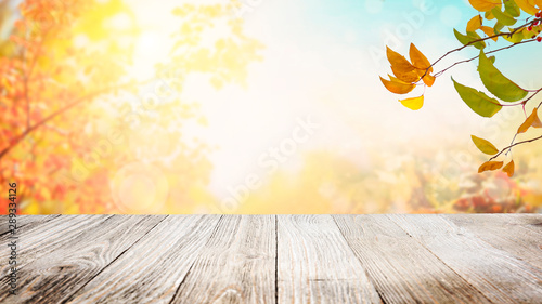 autumn leaves on wooden background - 289334126