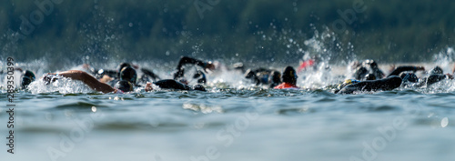 Fototapeta Triathletes swimming in a lake at a triathlon competition