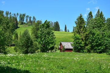 A landscape in the Belianske Tatry with a small wooden house. Slovakia.