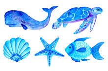 Watercolor Blue Nautical Set Isolated Onwhite Background. Hand Painted Illustration. Sea Turtle, Starfish, Shell, Whale And Fish.
