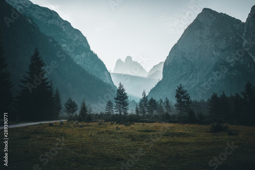 Photo Stands Green blue dolomite mountains in the morning scenery with the forest in the foreground