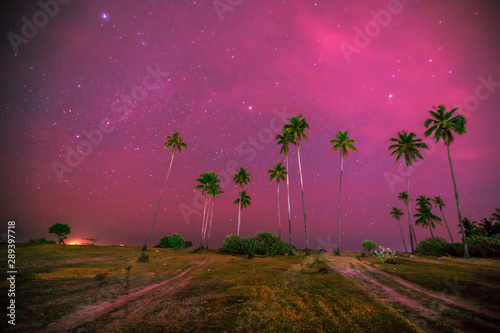 Fotobehang Roze Abstract background of celestial stars, blurred wallpaper of the Milky Way at night, is a natural beauty. Seen during the time of the season