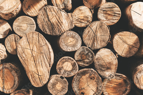 Photo sur Aluminium Texture de bois de chauffage Moody shot of stack of logs putted as a wall.