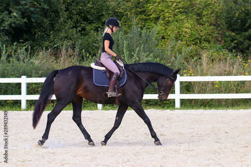 Fototapeta Horse in the riding arena in the portraits, with young rider in motion.. obraz