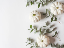 Floral Autumn Composition Of Pumpkins And Eucalyptus On A White Background. Copy Space