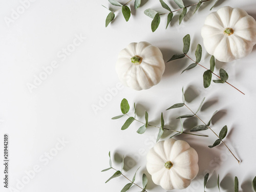 Foto auf Leinwand Blumen Floral autumn composition of pumpkins and eucalyptus on a white background. Copy space