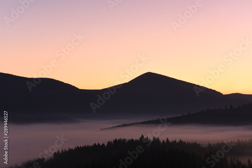 Silhouette of mountains and morning fog in a valley among coniferous forests. Beautiful majestic nature in the early morning.