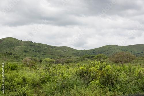Foto auf Gartenposter Hugel Kwazulu natal, South Africa.