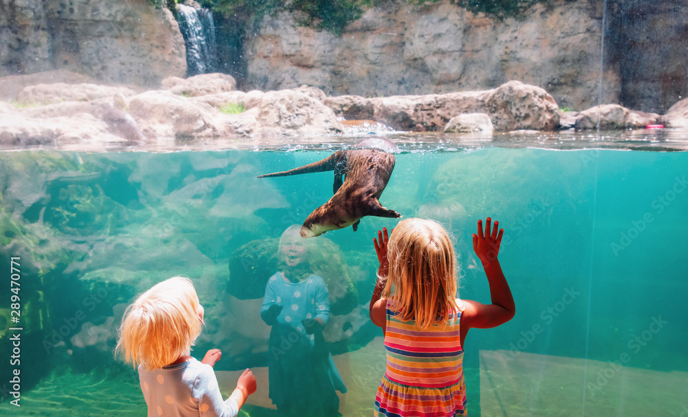 Fototapety, obrazy: kids-two girls- looking at otter in large aquarium