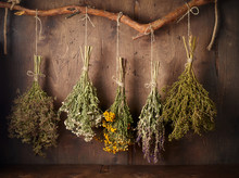 Drying Medical Herbs For Use I...
