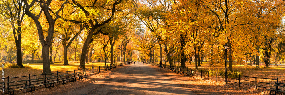 Fototapety, obrazy: Central Park panorama in autumn, New York City, USA