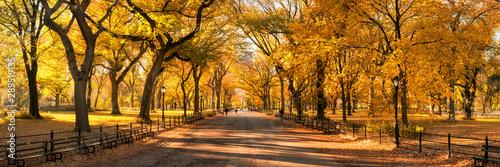 Fototapeta Central Park panorama in autumn, New York City, USA obraz