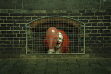 A Scary Clown With A Balloon Caged Behind A Lattice