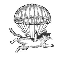 Cat Animal Flies With Parachut...