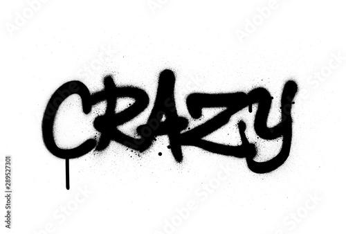 Leinwand Poster graffiti crazy word sprayed in black over white
