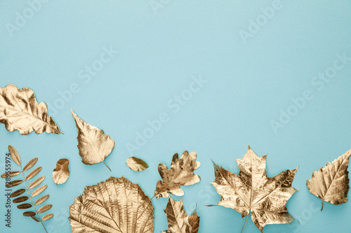 top view of colorful autumnal golden foliage on blue background