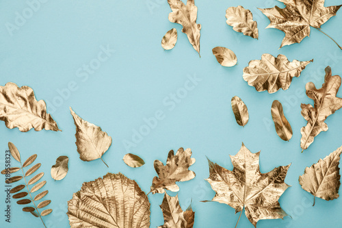 top view of autumnal golden leaves on blue background with copy space