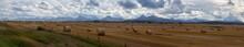 Panoramic View Of Bales Of Hay...