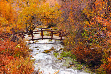 Panel Szklany 3D Autumn stream with a bridge in the Wasatch Mountains, Utah, USA.
