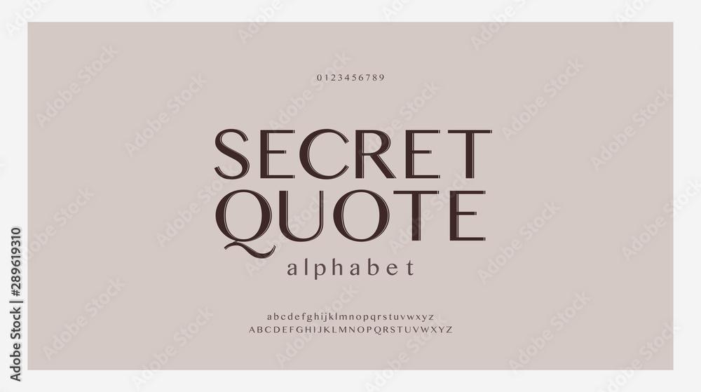 Elegancki zestaw czcionek liter alfabetu. Klasyczne niestandardowe wzory na logo, plakat. Czcionki typografii to klasyczny styl, regularne wielkie litery, małe litery i cyfry. ilustracji wektorowych <span>plik: #289619310 | autor: geengraphy</span>