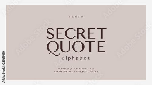 Pinturas sobre lienzo  Elegant alphabet letters font set
